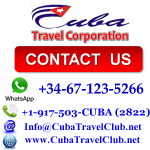 Wholesale & Retail Services for Travel Agencies